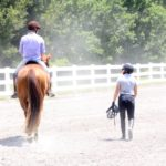 Choosing The Right Horse Trainer: 13 Critical Questions Every Rider MUST Ask NOW