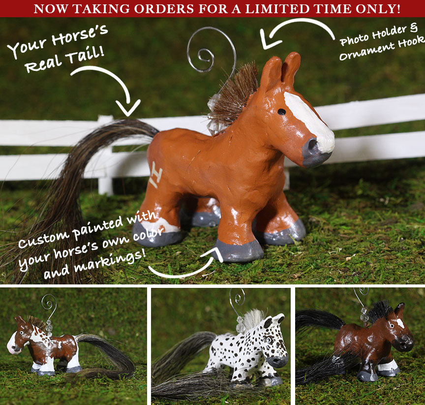 horse custom gift ornament