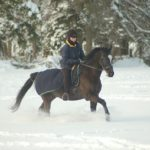 Top Must-Have Gear to Keep Equestrians Warm While Riding Their Horses This Winter
